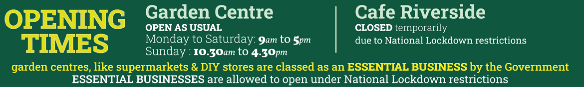 OPENING TIMES opening times